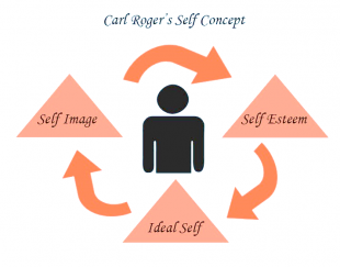 Components of Self Concept - self-concept